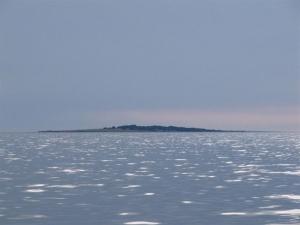 otok Palaciol