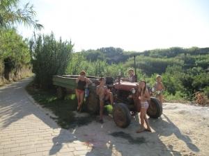 Predah na putu do vinograda