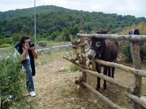 Magarac i fotograf