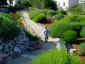 Šetnja u vrtu